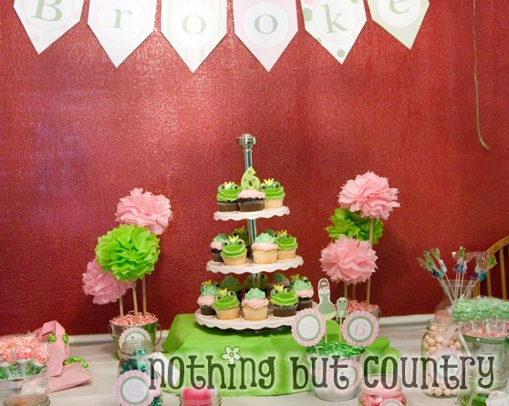 Princess Frog Party Decorations Candy Games