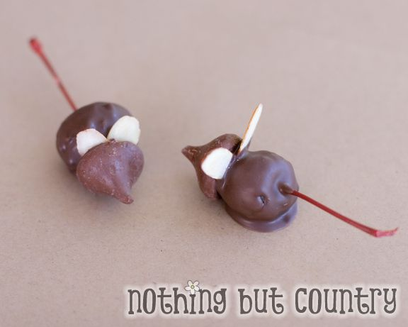 Adorable and Yummy Chocolate Christmas Mice | Nothing But ...