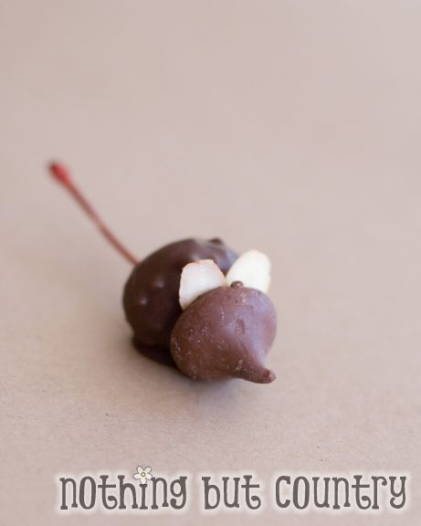 Adorable and Yummy Chocolate Christmas Mice   Nothing But Country