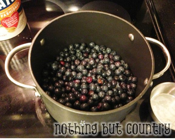 Homemade Blueberry Crumble | NothingButCountry.com