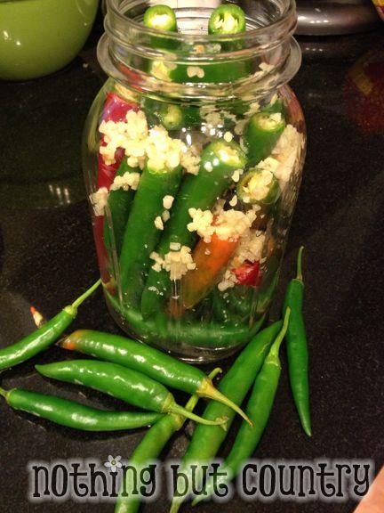 Hot Pepper Sauce / Pepper Vinegar   NothingButCountry.com