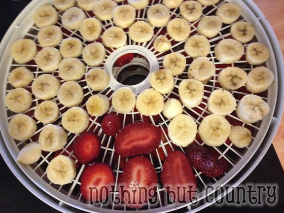Loving our dehydrator - yummy snacks and seasonings