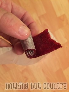 Homemade Fruit Leather - Fruit Roll Up