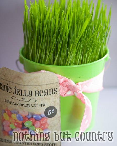 Magic Jelly Beans